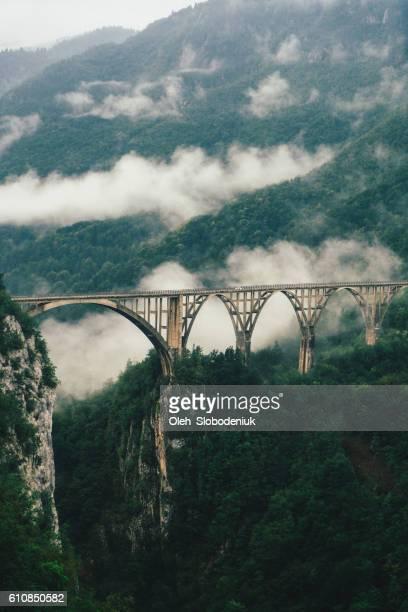 bridge on tara river - montenegro photos et images de collection