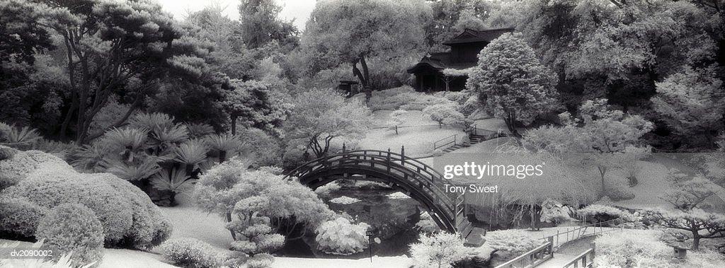 Bridge Over a River : Stock Photo