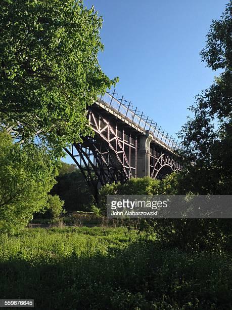 Bridge over green parkland