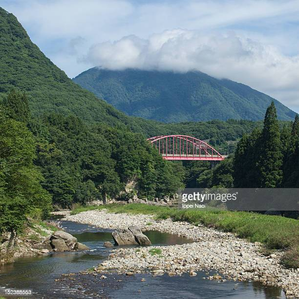 bridge over lush river gorge in mountains - ippei naoi stock photos and pictures