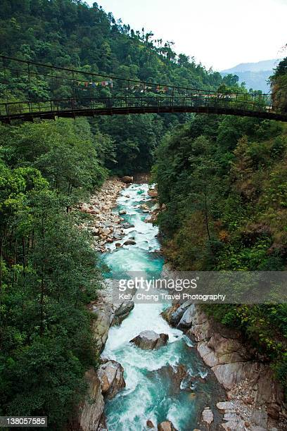 bridge over river at forest - sikkim stock pictures, royalty-free photos & images