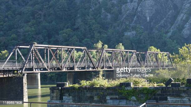 bridge over river in forest - solomon turkel stock pictures, royalty-free photos & images
