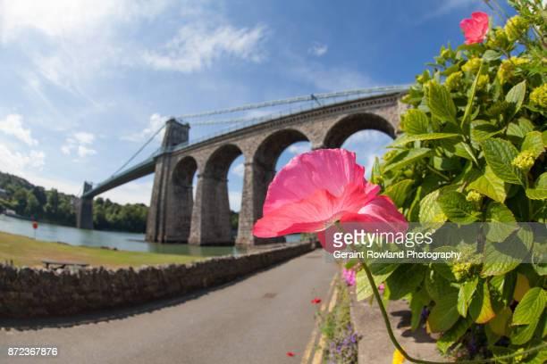 bridge over the menai strait, anglesey - menai bridge - fotografias e filmes do acervo