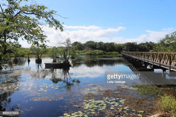 Bridge over the Timeantube Lagoon - Praia do Forte - BA -