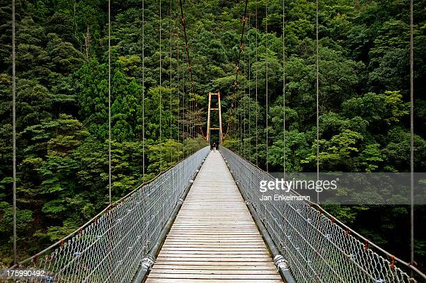 bridge over the yoshino river in oboke - vale de iya - fotografias e filmes do acervo