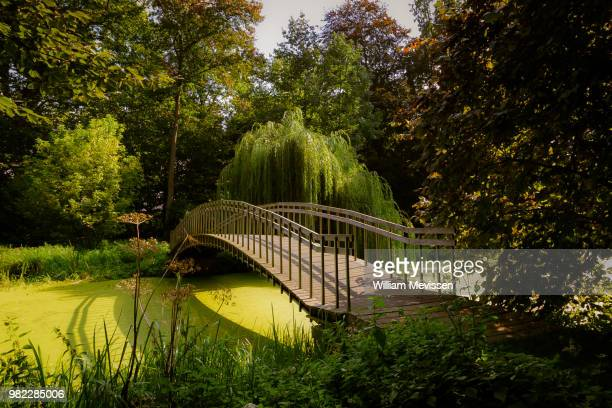 bridge over troubled water - william mevissen stock photos and pictures