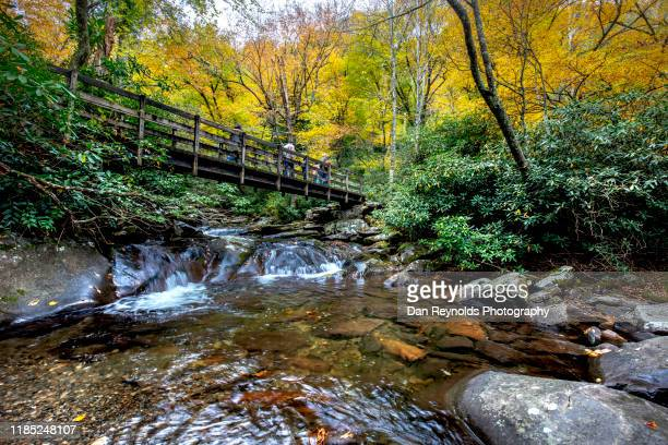 bridge over water with tourist - tennessee stock pictures, royalty-free photos & images