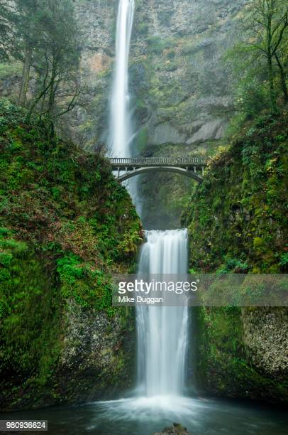 bridge over waterfall between moss covered rocks, multnomah falls, oregon, usa - columbia river gorge stock pictures, royalty-free photos & images