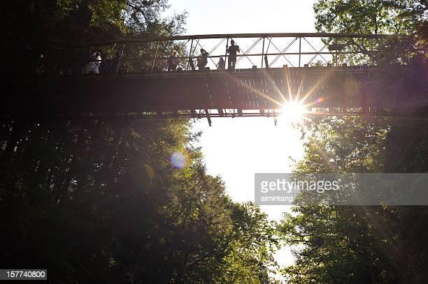 bridge over watkins glen - watkins glen stock photos and pictures