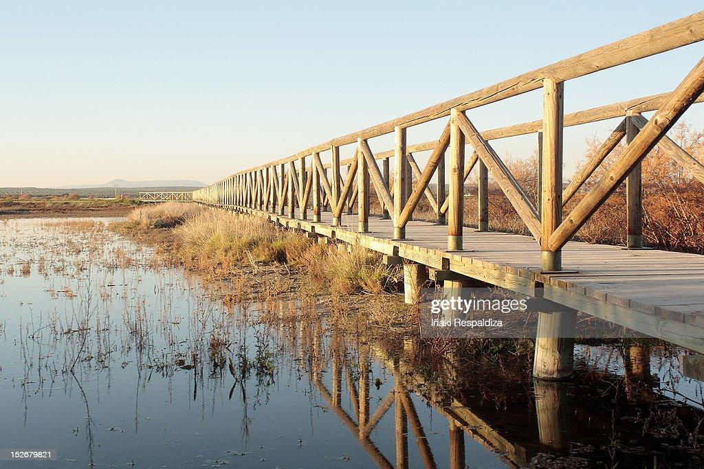 Bridge : Foto de stock