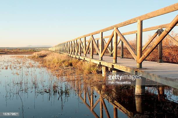 bridge - iñaki respaldiza stock pictures, royalty-free photos & images