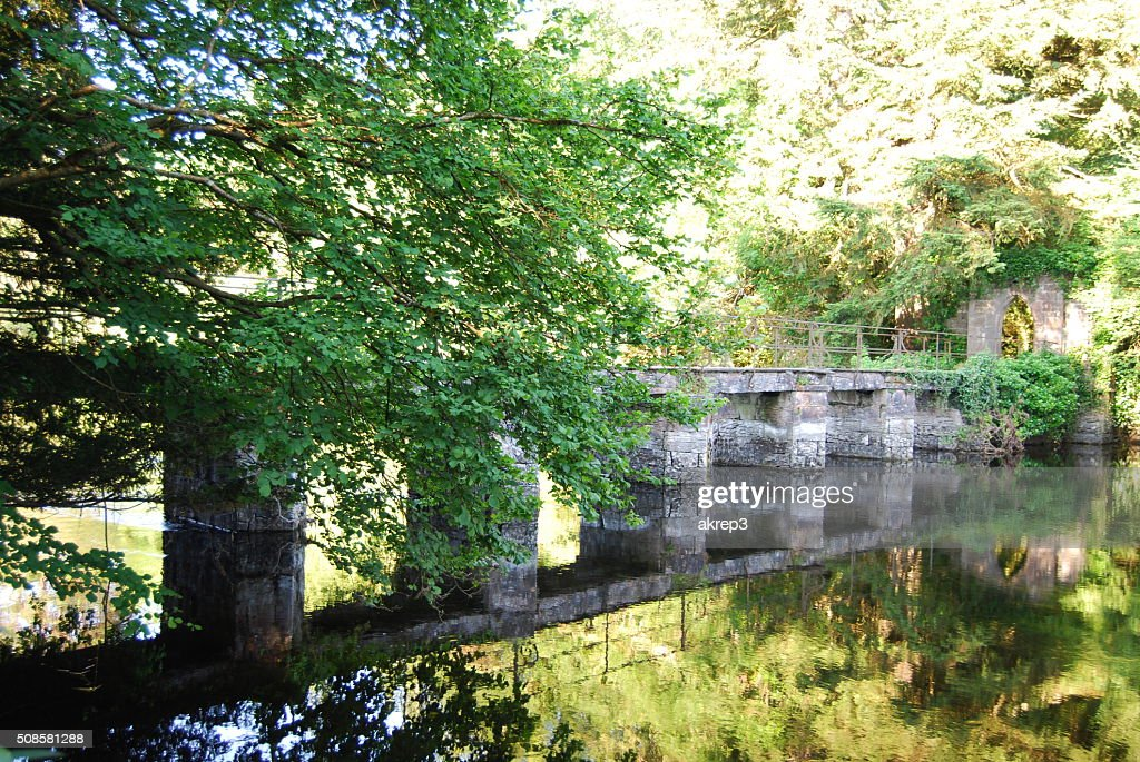 Bridge Reflection : Stockfoto