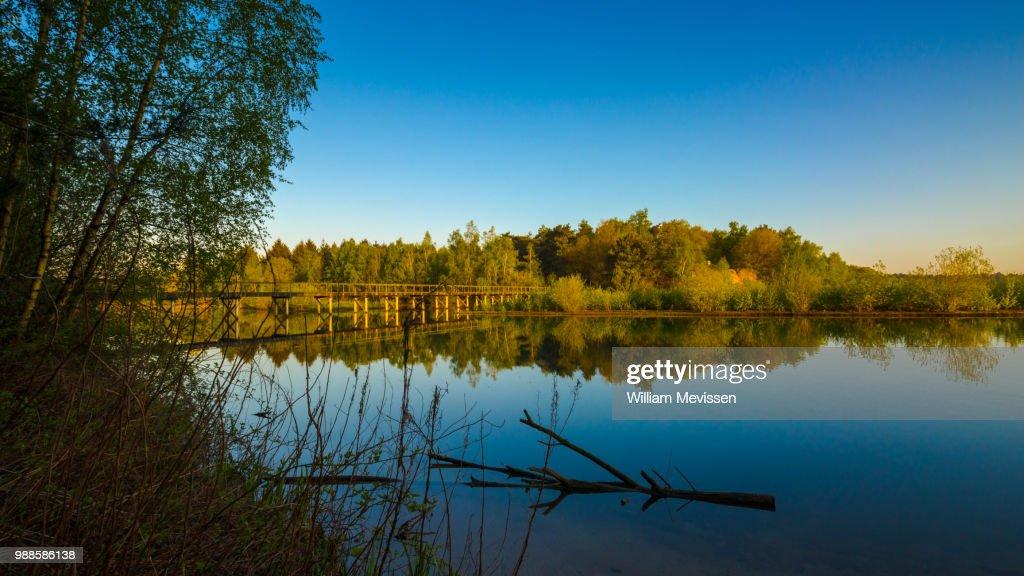 Bridge Reflections : Stockfoto