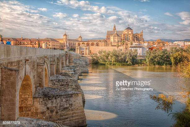 Bridge, river and Mosque-Cathedral