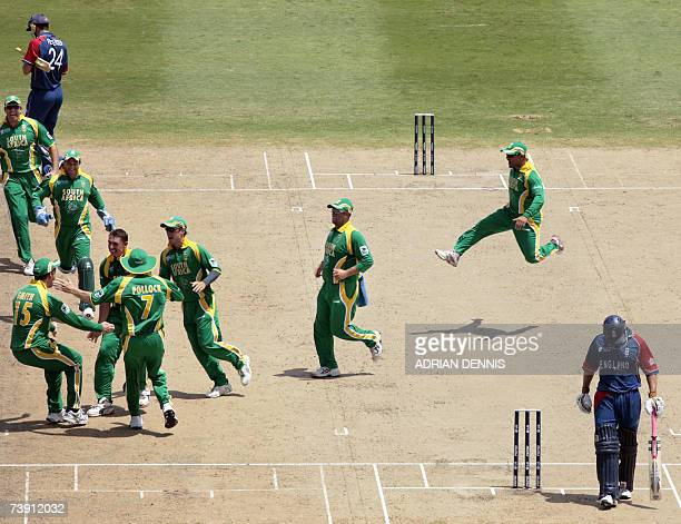 South African players celebrate after taking the wicket of England Kevin Pietersen during the Super-Eight ICC World Cup cricket match at the...