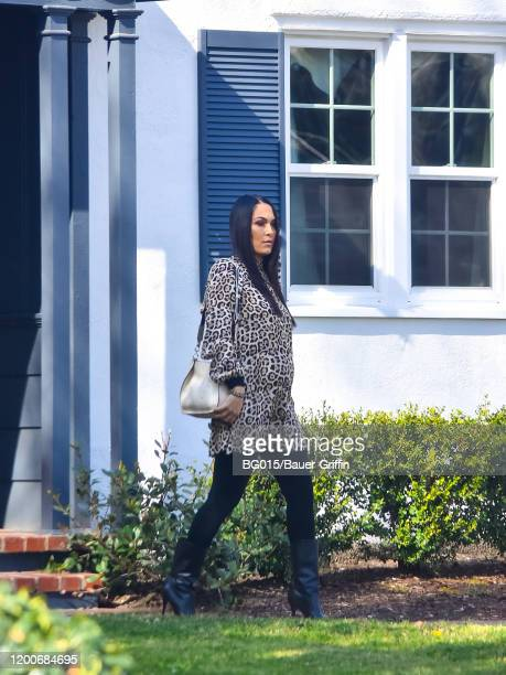 Brie Bella is seen on February 13 2020 in Los Angeles California