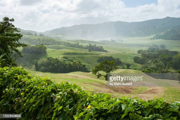 brief, tropical rain over the martinique countryside near - アンティル諸島 ストックフォトと画像