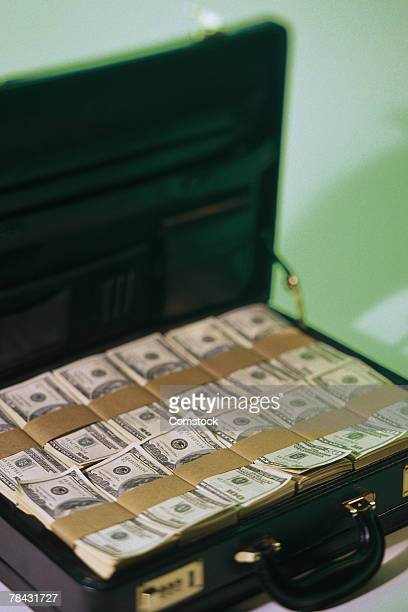 Briefcase with bundles of American money