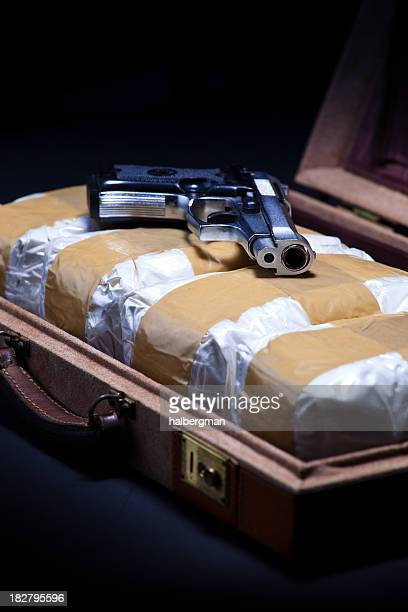 Briefcase with Cocaine and a Handgun