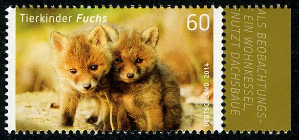 Briefmarke Deutsche Post 2014 Tierkinder Fuchs Pictures | Getty Images