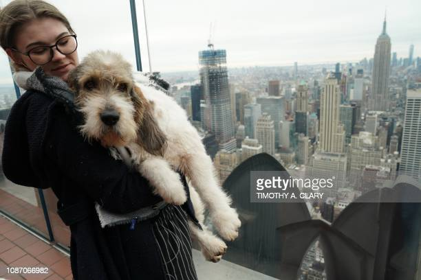 Brielly Cipriotti with Buzz Lightyear a Grand Bassett Griffon Vendeen poses for photos on the Top of the Rock Observation Deck January 23 2019 in New...