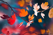 Bright  autumn summer natural background. Red and yellow leaves  in the autumn forest. Magical nature og autumn.