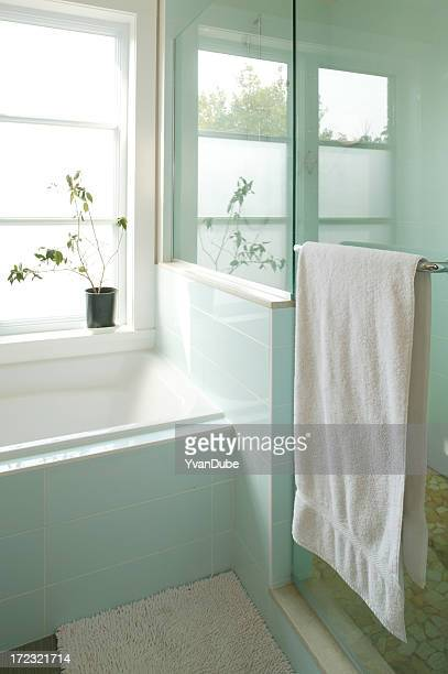 Bright bathroom with the sun shining in