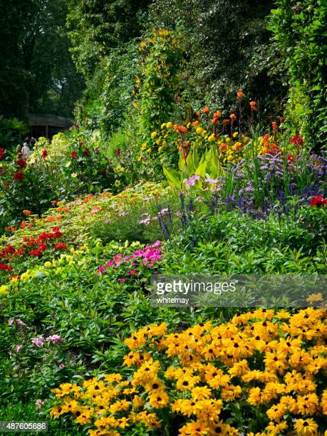 Bright coloured flowerbed in a London park