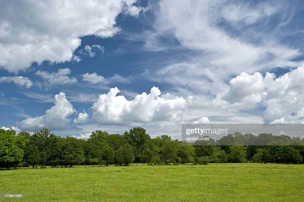 Bright country sky in spring : Stock Photo