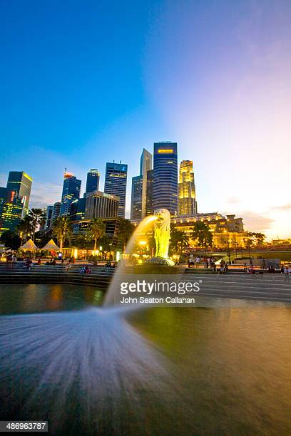bright lights, big city! - merlion stock pictures, royalty-free photos & images
