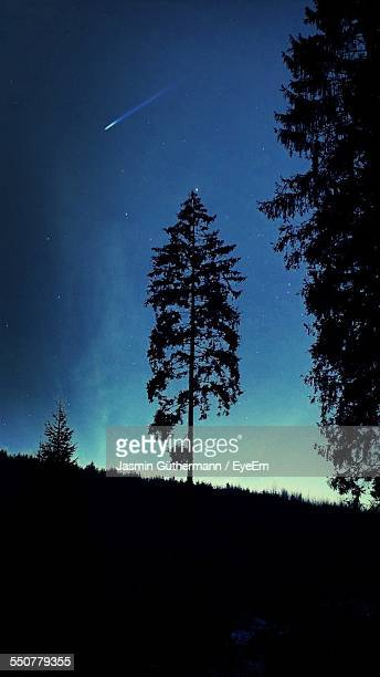 Bright Meteor Appears Over Silhouetted Trees