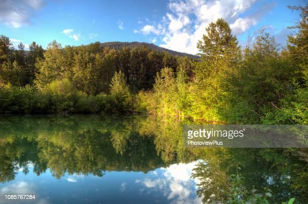 bright reflections on still water - メリーランド州 ストックフォトと画像