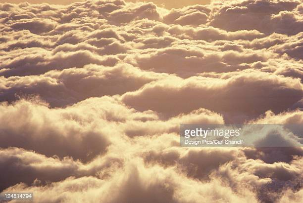 Bright sun shining upon a bed of puffy clouds at dusk.