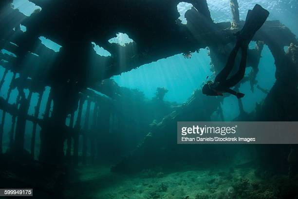 Bright sunlight pierces a shallow World War II shipwreck.