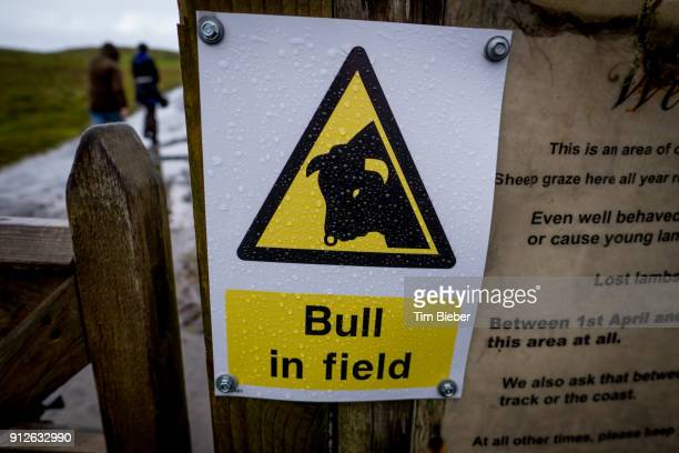 Bright yellow Danger sign for bull in field