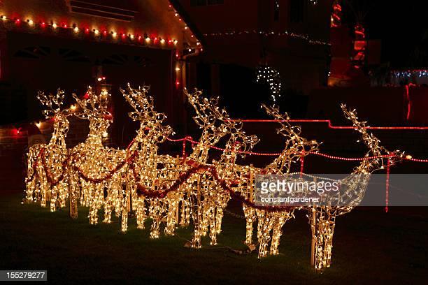Brightly Lit Christmas Reindeer