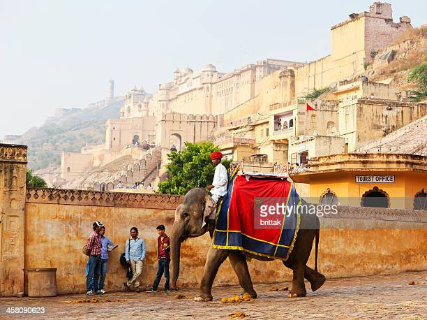 Brightly painted elephant with mahout at Jaipur fort.