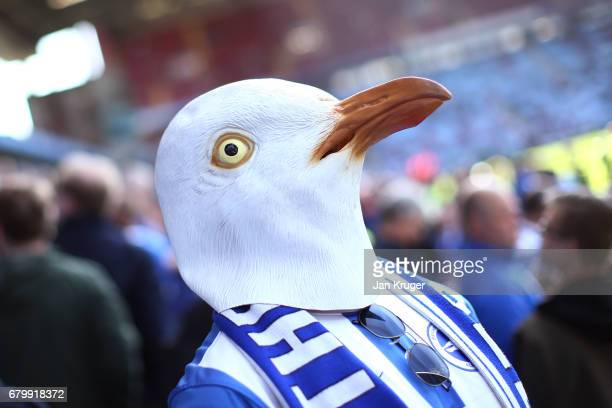 Brighton and Hove Albion fan wears his seagul mask during the Sky Bet Championship match between Aston Villa and Brighton Hove Albion at Villa Park...