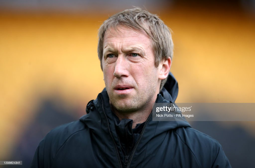 Wolverhampton Wanderers v Brighton and Hove Albion - Premier League - Molineux : News Photo