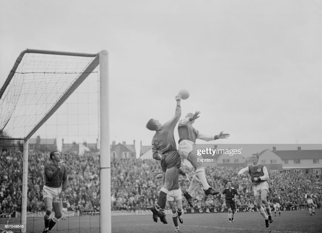 Brighton and Hove Albion vs Millwall : News Photo