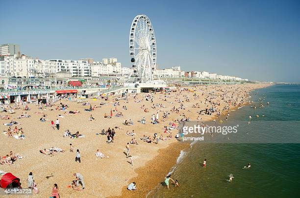 brighton beach england - skinny dipping stock photos and pictures