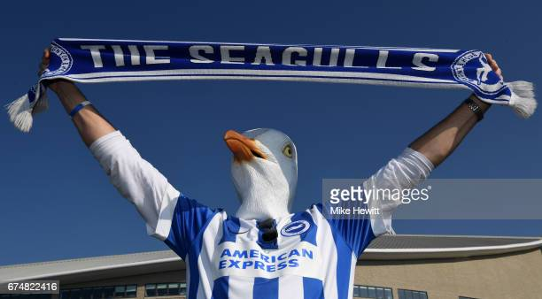 Brighton fan wears a seagull mask prior to the Sky Bet Championship match between Brighton Hove Albion and Bristol City at Amex Stadium on April 29...