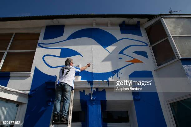 Brighton Hove Albion fan puts the finishing touches to painting a house in Brighton Hove Albion's colours to celebrate their promotion to the Premier...