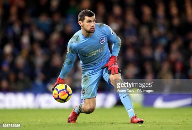 Brighton Hove Albion goalkeeper Mathew Ryan