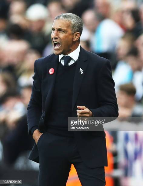 Brighton Hove Albion manager Chris Hughton reacts during the Premier League match between Newcastle United and Brighton Hove Albion at St James Park...