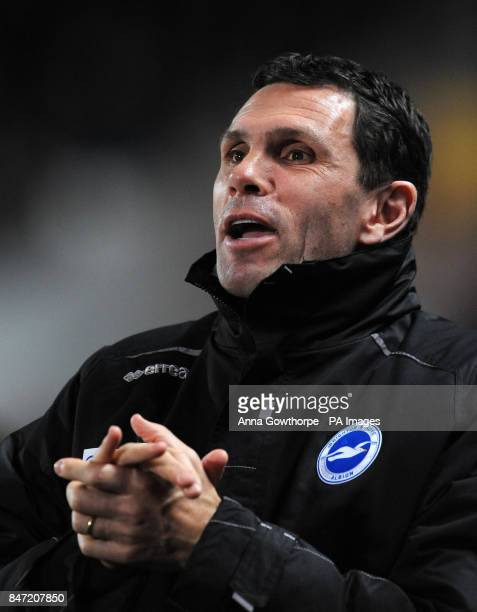 Brighton Hove Albion manager Gus Poyet ahead of kick off of the npower Football League Championship match at the KC Stadium Hull