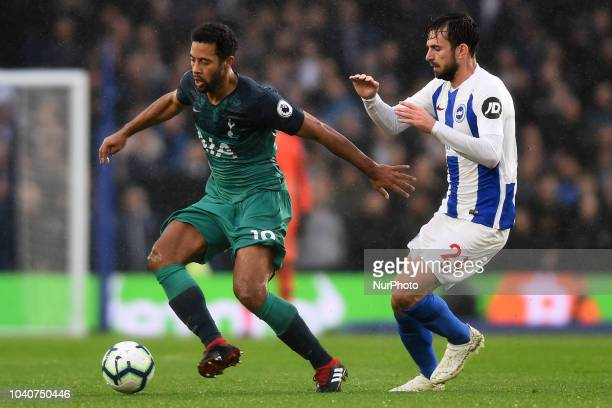 Brighton midfielder Davy Propper hassles Tottenham midfielder Mousa Dembele during the Premier League match between Brighton and Hove Albion and...
