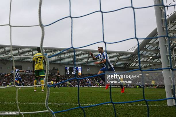 Brighton's Glenn Murray celebrates scoring the teams first goal during the Sky Bet Championship match between Brighton Hove Albion and Norwich City...