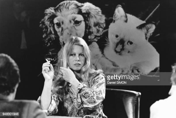 Brigitte Bardot dans l'émission 'Les Dossiers de l'écran' le 7 avril 1981 à Paris France