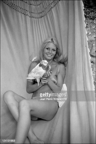 Brigitte Bardot In Saint Tropez France in the 1960's Brigitte Bardot